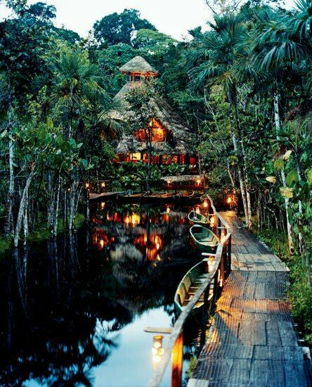 exotic travel destination tree house