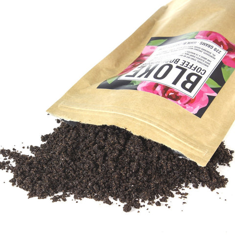bloke body coffee scrub