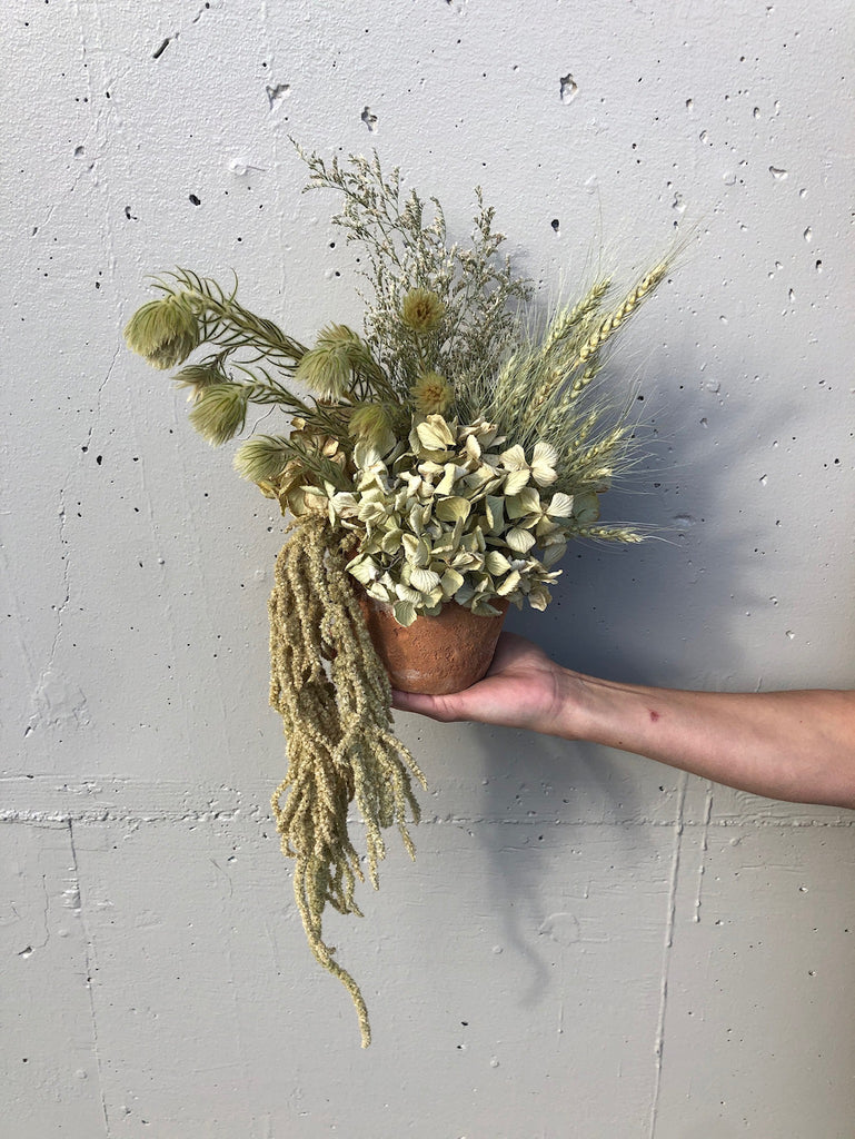 Dried arrangement in pot - Option 5