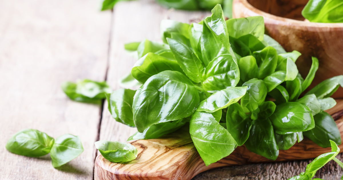 5 Uses for Fresh Basil