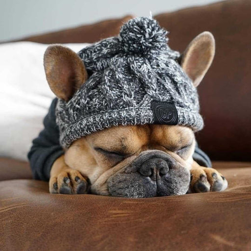 Warm Winter Pet Hat