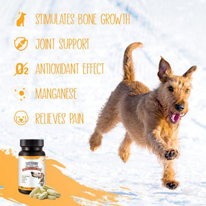 DhohOo® Supplements Joint for Dog
