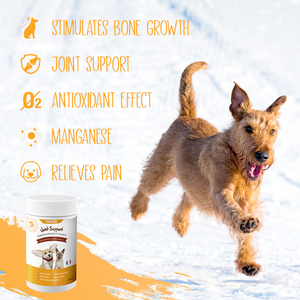 DHOHOO® Pet Joint Support Powder Supplements