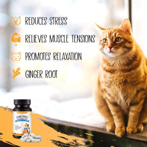 DhohOo® Supplements Soothe & Calm Support for Cat