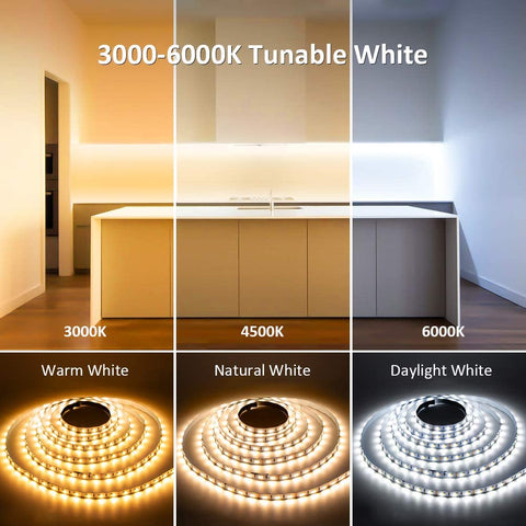 40ft 12M Tunable White 3000-6000K Warm Nature Cool White LED Strip Lights