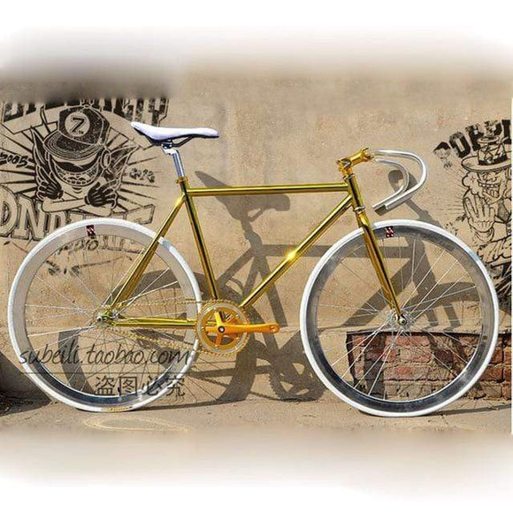 Fixed Gear Bike Retro Steel Frame track bike 700C 48cm 52cm Road Bike Steel Frame single speed Bicycle DIY color