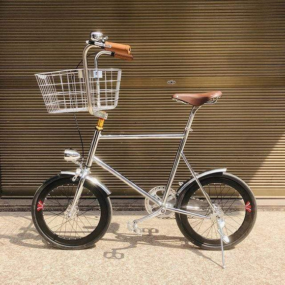 20 inch bike Single speed Retro Pet Bike fixie bike vintage sliver bicycle frame mini vinbicycle with sliver basket