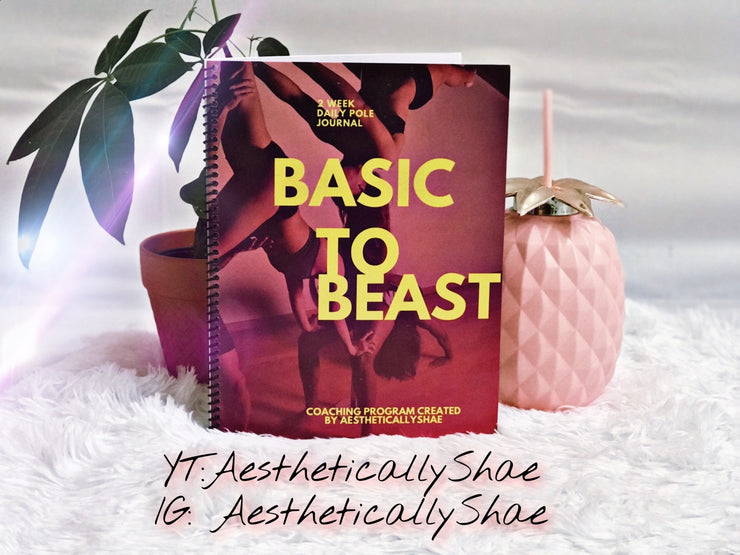 """Basic to Beast"" Beginner Pole Journal - Saturday Night Glam"