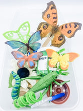 Load image into Gallery viewer, Toddler Bug and Butterfly Garden