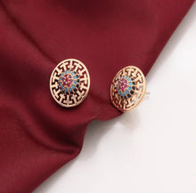 Load image into Gallery viewer, Gorgeous Earring with Stones