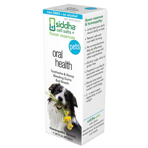 Siddha Remedies Oral Health for Pets