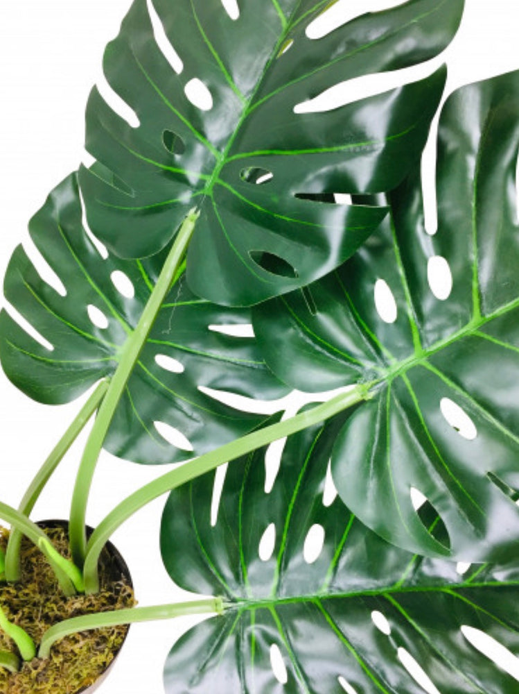 Load image into Gallery viewer, Faux Monstera plants-Maximalist Love-H120cms-Maximalist Love