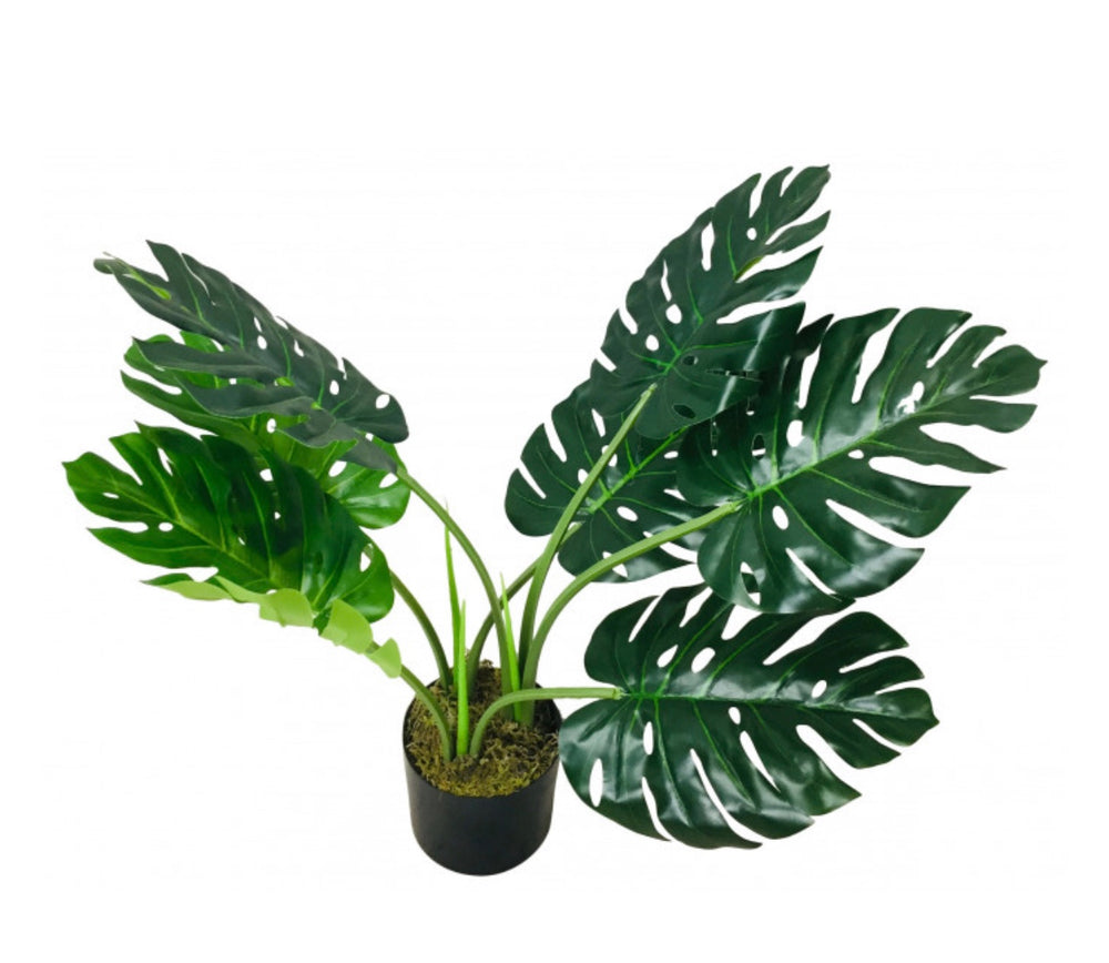 Load image into Gallery viewer, Faux Monstera plants-Maximalist Love-70cms-Maximalist Love