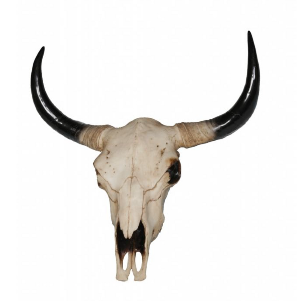 Large Bison Skull-Decor-Maximalist Love-Maximalist Love