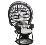 Peacock Noir Chair-seating-Maximalist Love-Maximalist Love