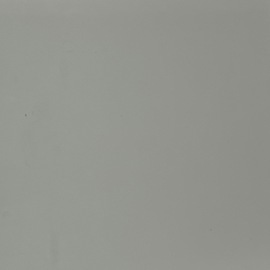 light grey paint swatch