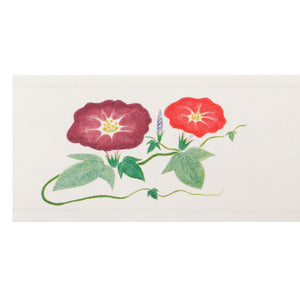 "[Clearance] Morning Glory Chopstick Sleeve 5"" Length (250/pack)"