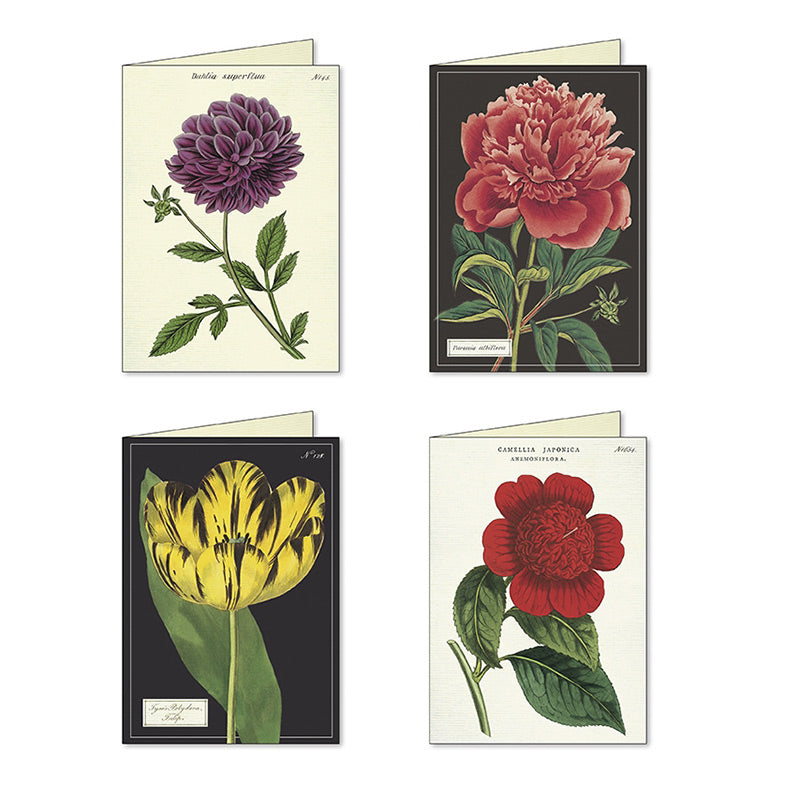Botanica Assorted Notecards