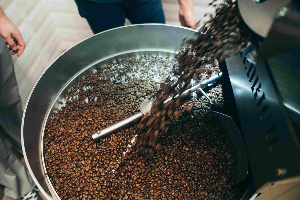Coffee ester-roasted-beans