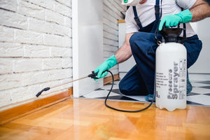 pest control company providing services to household