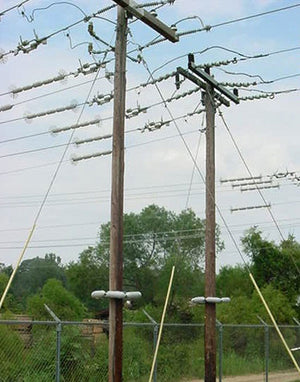 power lines with critter guard products