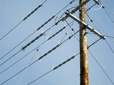 line guard protecting overhead power lines