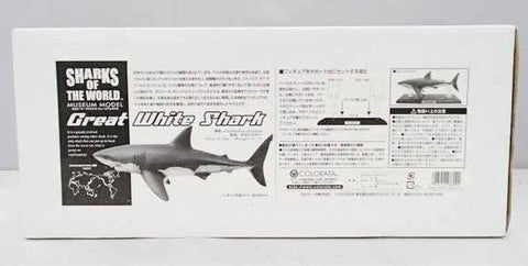Colorata Shark Of The World Great White Shark Collection Statue Figure - Lavits Figure  - 1