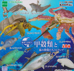 Epoch Earth Life Journey Gashapon Crustacean Friends Strap Of The Sea 8 Trading Figure Set - Lavits Figure