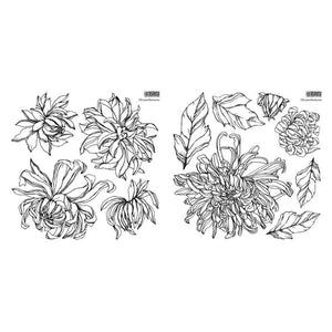 Iron Orchid Design | Stamp | Chrysanthemums - NEW RELEASE MAY 2021