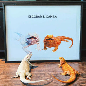 Two pet custom pet portrait of two bearded dragon. The modern pet drawing include their names on the poster in black. The two beardys are staring at their portraits, what a perfect gift.
