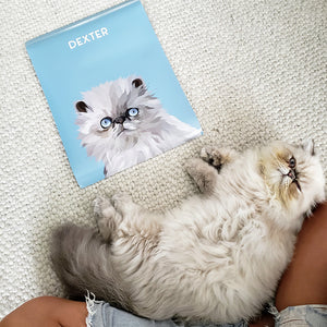 Cat portrait from photo of Persian Cat Dexter on our Ocean Blue background. Personalize name and charaterist is on ghe poster as well. Dextr is layong down beside his poster.