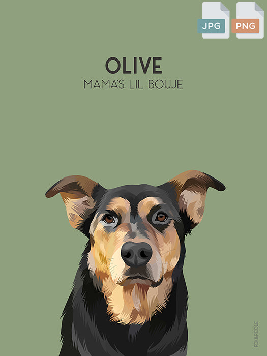 Olive Dog Portrait