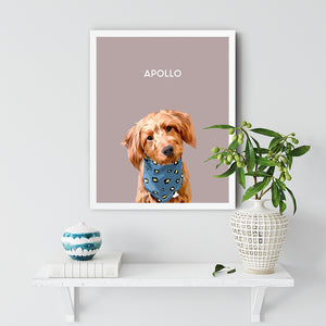 Apollo Dog White Frame