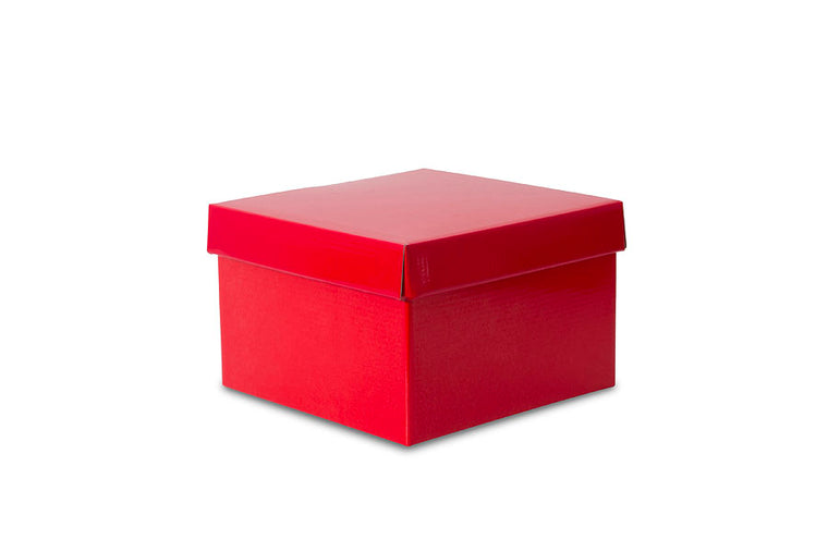 Red Large Gloss Gift Box