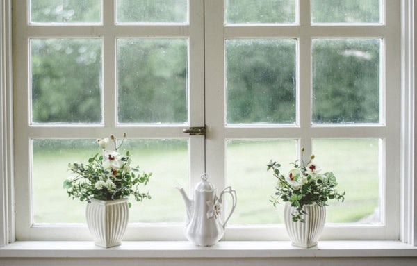 plants on window sill - carefully placed foliage