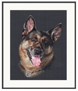 "11"" x 14"" K9 Colored Pencil Portraits"