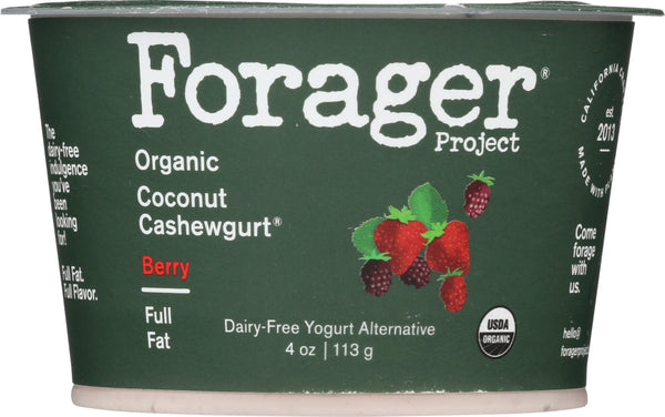 FORAGER: Organic Coconut Cashewgurt Berry, 4 oz