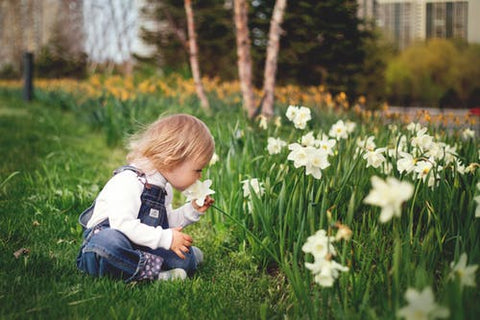 A toddler wearing unisex clothes sits on grass smelling daffodils