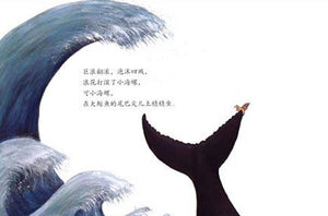 小海螺和大鲸鱼 The Snail and the Whale (AU & NZ)