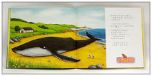 Load image into Gallery viewer, 小海螺和大鲸鱼 The Snail and the Whale