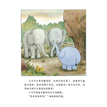 Load image into Gallery viewer, 大象小不点(套装全4册)Little Elephant (Set of 4)