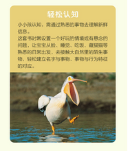 Load image into Gallery viewer, 我的第一套自然认知书(第一辑,全20册) My first set of nature books (the first series, 20 volumes in total)