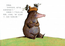 Load image into Gallery viewer, 是谁嗯嗯在我的头上  The Story of the Little Mole Who Went in Search of Whodunit