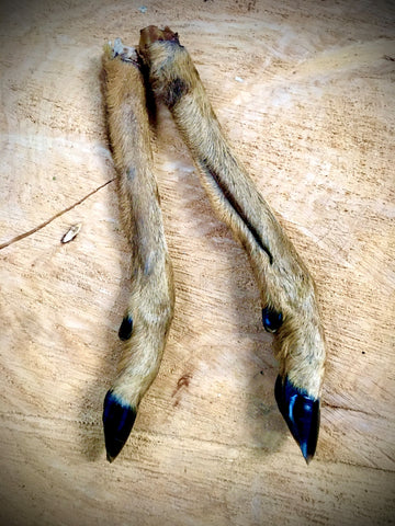 Deer Leg - Small or Large
