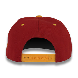 Burgundy & Gold Money Bag (Snapback)