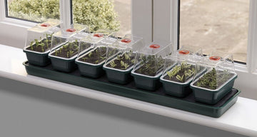 Garland Super 7 Self Watering Windowsill Propagator - 14 Days Watering