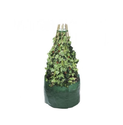 Garland Pea and Bean Support Ring - Garden Cane Holder