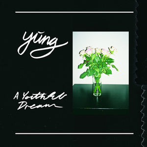 Yung ‎– A Youthful Dream (Vinyl, LP, Album)