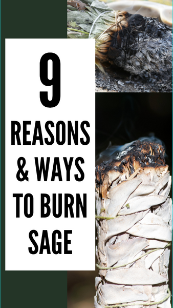 9 Reasons & Ways To Burn Sage !!