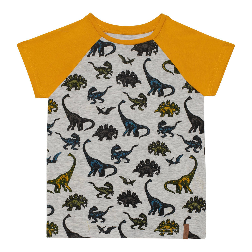 Printed Raglan T-Shirt with Dinosaurs Boy C30U73_056